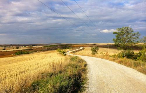 Meseta Path